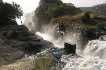 4 day Africa Ugandan safari Murchison Falls
